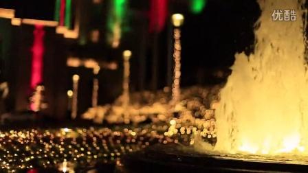 2014 Tree Lighting Ceremony 2014年圣诞点灯仪式亮灯瞬间