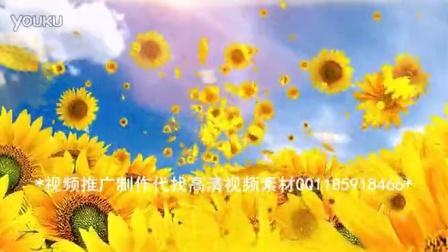 太阳花向日葵飘舞led屏幕背景素材图片