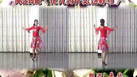 1纯艺舞吧广场舞 花儿为什么这样红(正背面演示)