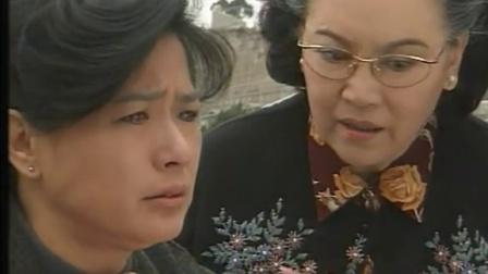 飘零燕Ⅱ孤星泪(20集全)
