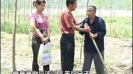 安徽民间小调害公公全集 1 李发东
