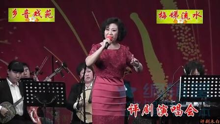 评剧演唱会2014