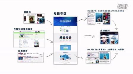 百度认证-2014年核心代理商案例大赛-2014年雅诗兰黛眼霜线上推广营销案例
