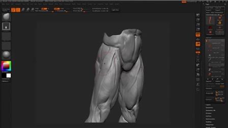 第六章:腿部骨骼结构