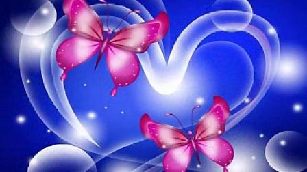 叠蝴蝶的步骤图解