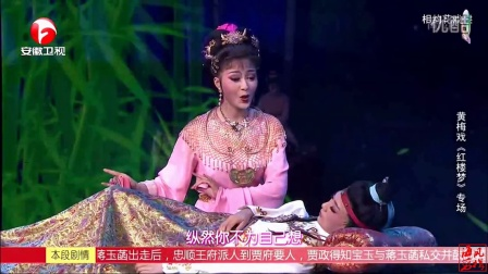 HD 黃梅戲《紅樓夢》選段三 袁媛 何云等-表演 025