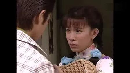 港剧 西关大少粤语 (2003)30集电视剧