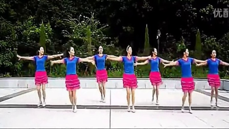 2015广场舞 爱我你就把我来追求 广场舞教学视频大全