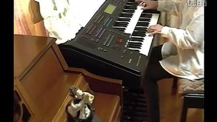 エレクトリカルパレードドリームライツ 双排键电子琴 演奏图片