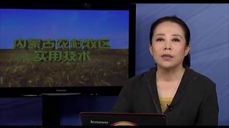 奶牛标准化养殖主推技术视频