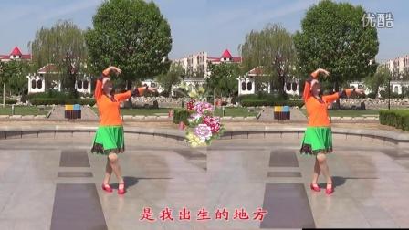 临盘立华广场舞 310妈妈的羊皮袄 献给母亲节 立华编舞附教学