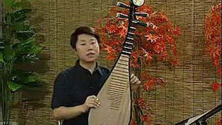 张强琵琶视频01.琵琶的发展简史