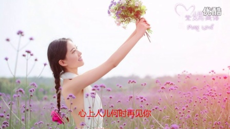 相思曲 - 云菲菲 最新伤感网络歌曲 流行歌曲dj舞曲图片