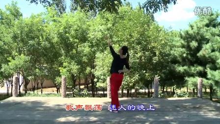 舞动青春广场舞 草原歌曲大全 mp3