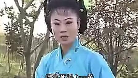 反修:安徽地方戏庐剧   儿不认妈