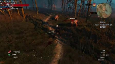 阿津《巫师3:狂猎》(7)女巫凯拉-老鼠之塔(上)完整版