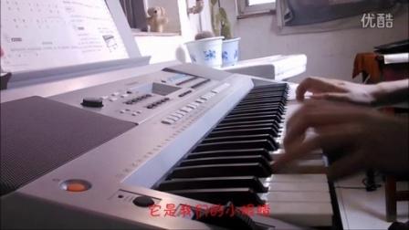 【小星星】电子琴弹奏-卓爷落款