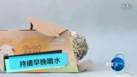 食用菌栽培成品菌包栽培步�E录像_高清视频食用菌shiyongjun