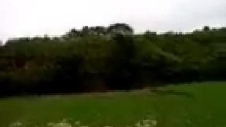 桃花源风景