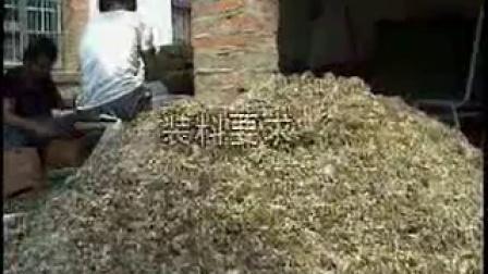 金针菇的种植方法-高产栽培技术_高清视频食用菌shiyongjun