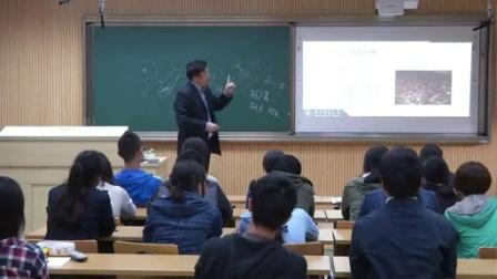 香菇的种植技术以及一年四季栽培详细讲�大学教授主讲)_高清视频食用菌shiyongjun