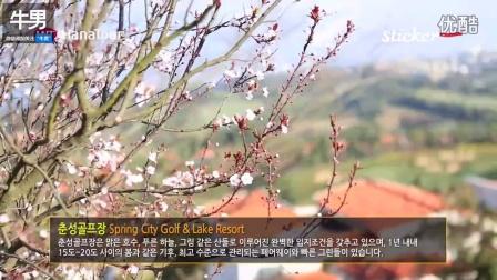 韩国导游体验昆明春城湖畔高尔夫度假村