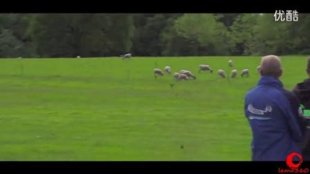 世界顶级飞手遥控直升机3D特技暴力飞行炸机精选视频