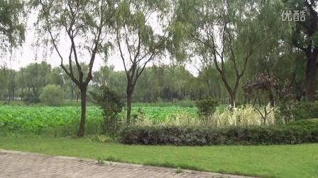 美国内华达山学院国际本科上海校区