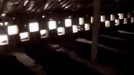巴西菇冷棚栽培技术之巴西蘑菇大棚种植技术_高清视频食用菌shiyongjun