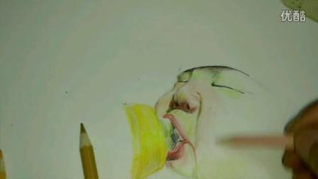 彩铅 手绘蜻蜓