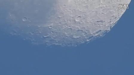 终于知道动物世界是怎么拍的了,尼康83倍光学变焦月面拍摄