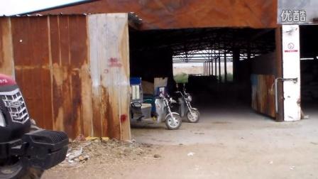 二台牧场养牛场小区视频