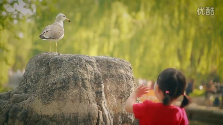 动物园的一天