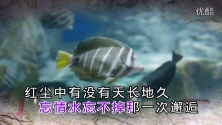 望海高歌-三生石上一滴泪-国语-双轨dvd视频