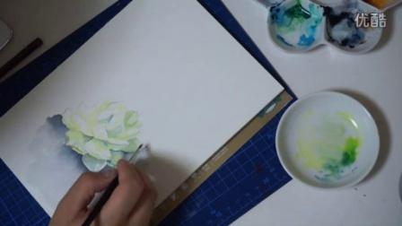 【aelim拂袖】水彩画多肉植物实录视频