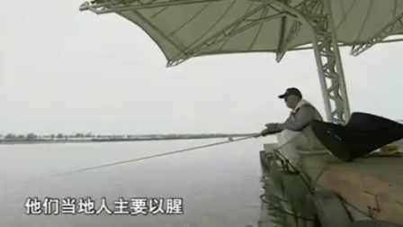 海杆串钩钓鲫鱼 化氏鱼饵配方图