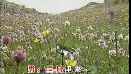 孙志宽 麻晓燕--五月散花