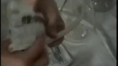 液体菌种技术科技食用菌液体菌种制作及发酵罐使用_标清 在线观看1食用菌shiyongjun