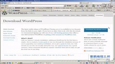WORDPRESS文件下载