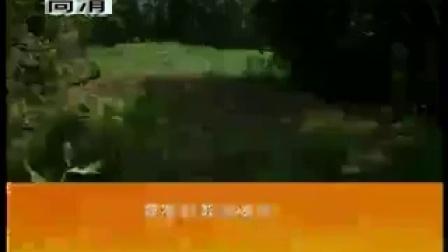 中药材茯苓种植技术视�c在线收看食用菌shiyongjun