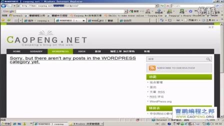 优化WORDPRESS的URL网址