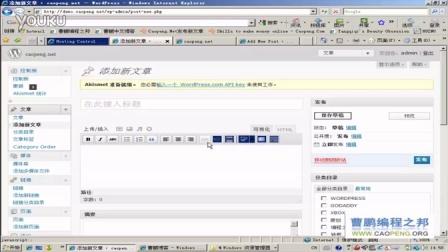 扩展增强WORDPRESS编辑器