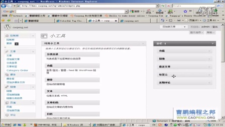 WORDPRESS TAGS标签