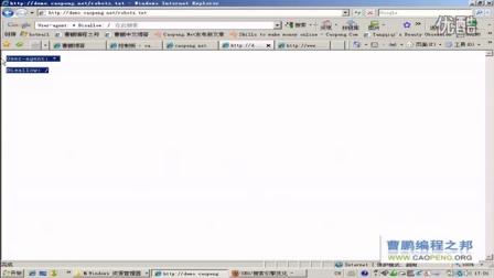 WORDPRESS网站ROBOTS.TXT的SEO优化