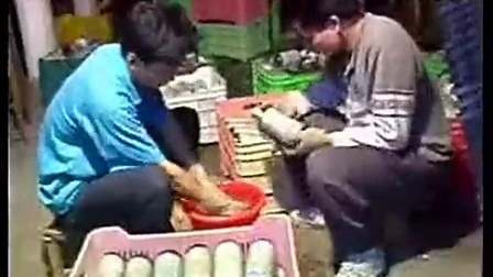 白背木耳集约化立体栽培高效农业技�c,食用菌shiyongjun
