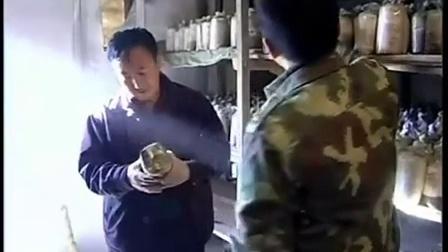 当前黑木耳生产应注意问题、硬果型蕃茄立体种植高产栽培技�c,食用菌shiyongjun
