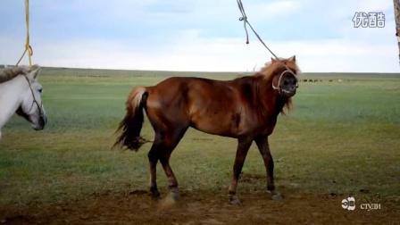 蒙古歌曲Batbayar Ihhetiin hulguud  duuchin