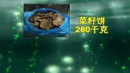 食用菌种植不出苗的双孢菇之双孢菇大棚栽培技术_1_120151024142656食用菌shiyongjun