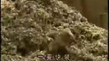 适合农村的致富项目金针菇工厂化优质高效栽培技术之金针菇袋料栽培_土豆_高清视频在线观看食用菌shiyongjun