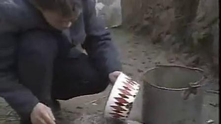 农业致富项目食用�K平菇栽培技术A之平菇四季标准化栽培新技�c,食用菌shiyongjun